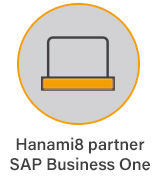 HANAMI8 Partner SAPBusiness One