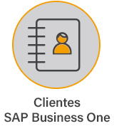 Clientes SAP Business One